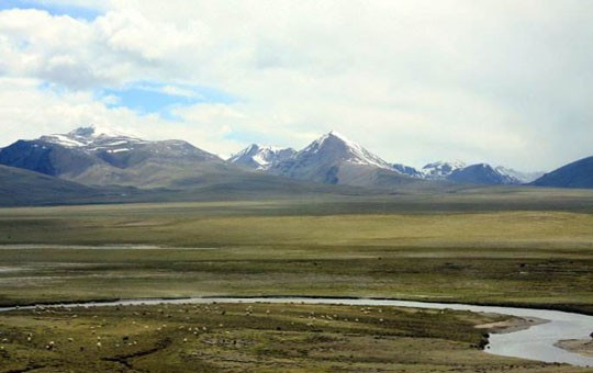 Changtang Grassland