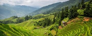 Yangshuo and Longsheng Rice Terrace Rural Adventure