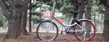 Beijing Bike Sharing Tour