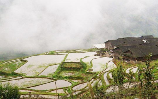 Longji Ancient Zhuang Village and Rice terraces ' 540x340 ' 1