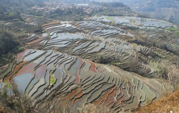 Yuanyang Hani Rice Terraces and Villages