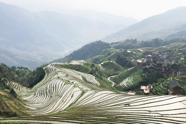 Longji Ping'an Rice Terraces